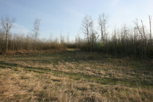 80 Acres Secluded Hunting Land near Madge Lake SK