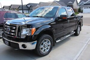 2009 Ford F-150 XLT Pickup Truck - EXCELLENT CONDITION