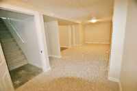 Renovated basement suite Available Immediately near 33rd!