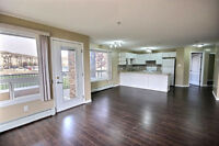 Professionally Painted and Cleaned 2 bd/2bth in South Terw.