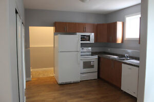 1 bedroom legal basement suite available for rent in Rosewood