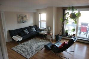 Third Female Roommate for Beautiful South End Apt.-AUG 1st!!