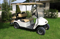 2007 EZ-GO Gas Golf Cart