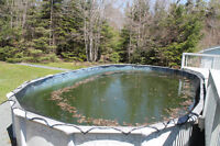33ft by 18 ft pool originally purchased at Levy Pools