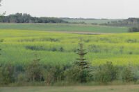 SK LAND SUITABLE FOR ACREAGE OR FARM