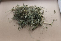 Hay for Chinchillas, Guinea Pigs, and Rabbits