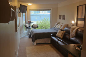20% Off - Big White Condo - In the Heart of the Village!