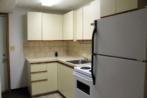 Bachelor Suite in North Park - Available Immediately