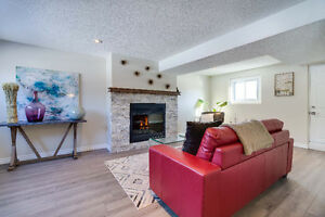 Fully Renovated In Brantford's North End! Cambridge Kitchener Area image 2