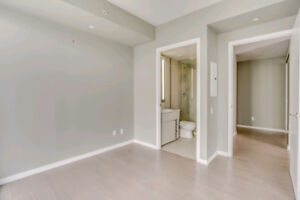 Large 2 Bedroom at Peter St Condos