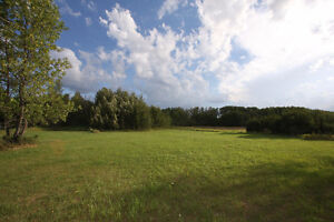 Buffalo Lake 1/2 Acre Surveyed/Marked Lot at Pelican Point