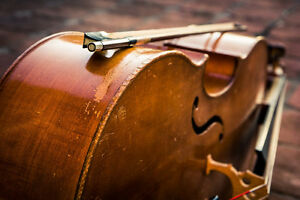 Classical musicians for hire! Kitchener / Waterloo Kitchener Area image 1