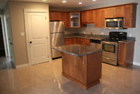 Beautiful 2 Bedroom + Den 1 Bath apartment in Stratford for rent