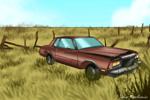 Wanted: Junk or not running cars