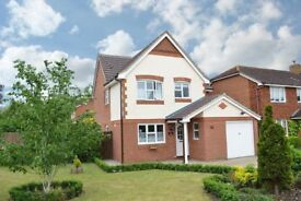 A Beautiful Detached House for Rent