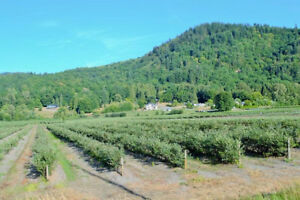Land for sale in Abbotsford