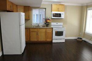 Basement suite- New house (Maple ridge/Albion)
