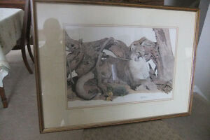 Limited Edition Nick Wilson Mountain Lion print