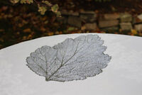 Beautiful Leaf Table Mats - Gorgeous for Weddings!