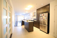 Brand new spacious condo close to Vendome free from Dec01