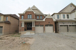 New 4 bedroom, 2.5 bathroom, two storey home for rent