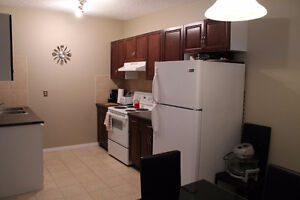 Large renovated 2 br townhouse in convenient Huntington, pets ok
