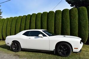 2009 Dodge Challenger SXT Plus with sunroof & Leather