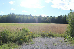 Beautiful Country lot over looking the Mer Bleue Bog,