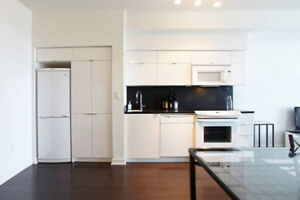 Convenient 2 room condo DT with view!- Avail Jan 1-Apr 30