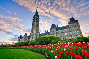 Rideshare - Toronto to Ottawa - $40 - 6:30PM AUG 15th