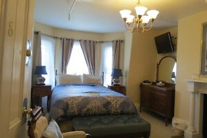 Furnished Apartment downtwon St. John's
