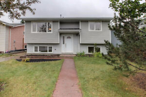 TOTALLY RENOVATED BI-LEVEL WITH 5 BEDS, 3 BATHS & IN-LAW SUITE!