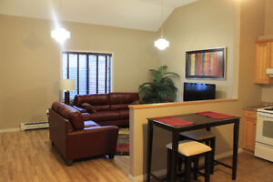 Fully Furnished Executive Style Two & Three Bedroom Suites