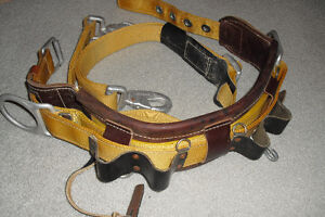 Pole Or Tower Climbing Safety Belt