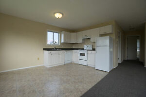 $1,250 · 2 Bedroom Suite Updated Close to Downtown Avail Jun 1
