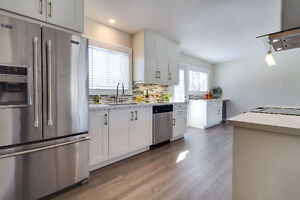 Fully Renovated In Brantford's North End! Cambridge Kitchener Area image 4