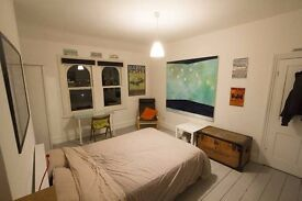 Massive room + panoramic views + extra storage + own fridge 14.05.17 flexible Crystal Palace
