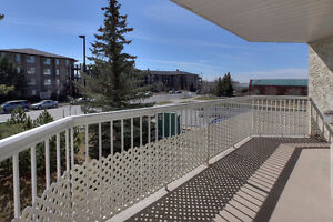 LOVELY 1281 FT2 CORNER UNIT IN WATERFRONT POINTE! Edmonton Edmonton Area image 15