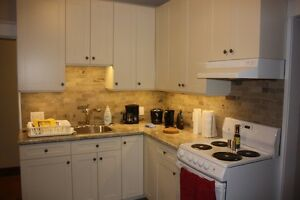 Charming newly renovated 1BR apartment in Century Triplex