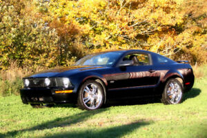 Mustang GT for Sale