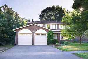 4+1 bdrm house 207 Browning Trail