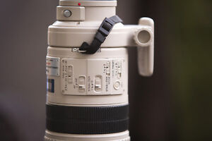 Want to trade Canon 300mm f2.8 IS USM toward late model Husky
