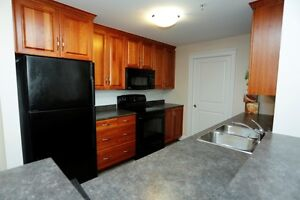 FULLY FURNISHED SHORT OR LONG TERM RENTALS CONDOS