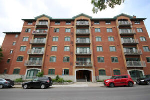 2 Bedroom, 2 bath high end apartment available immediately