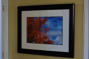 high quality picture framing Belleville Belleville Area image 5