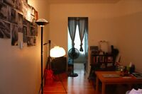 Renovated 1 Bedroom in heart of McGill University