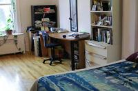Belle grande chambre à sous-louer pour juillet près du Mile-End