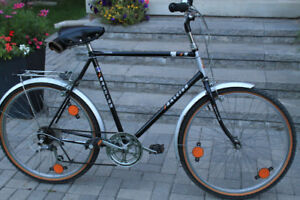 EXCELLENT Condition 5 Speed Raleigh Bike with rear rack