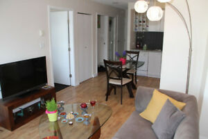 Downtown Fully furnished Nice and Cozy 1 bed+den available Aug 1