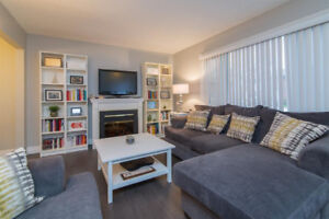 Beautiful Northend Condo for Rent Available Jan 1/19